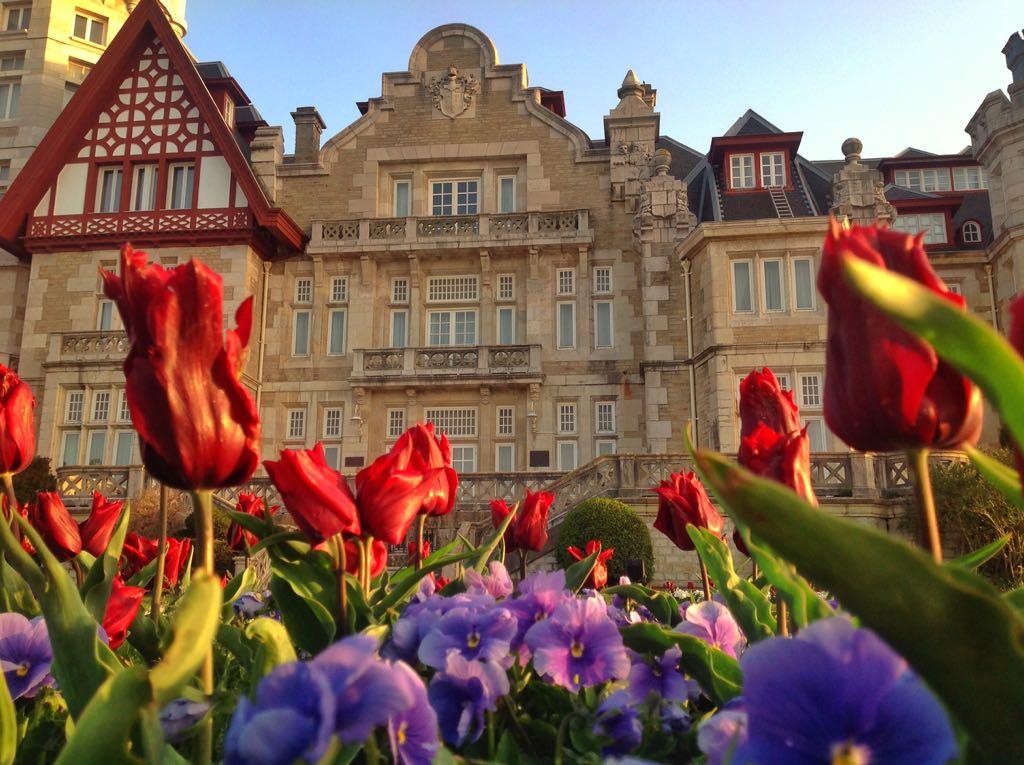 tulipanes-magadalena