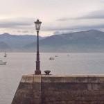 Mañana de mucha pesca en la bahía de Santander