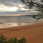 La vida en la playa
