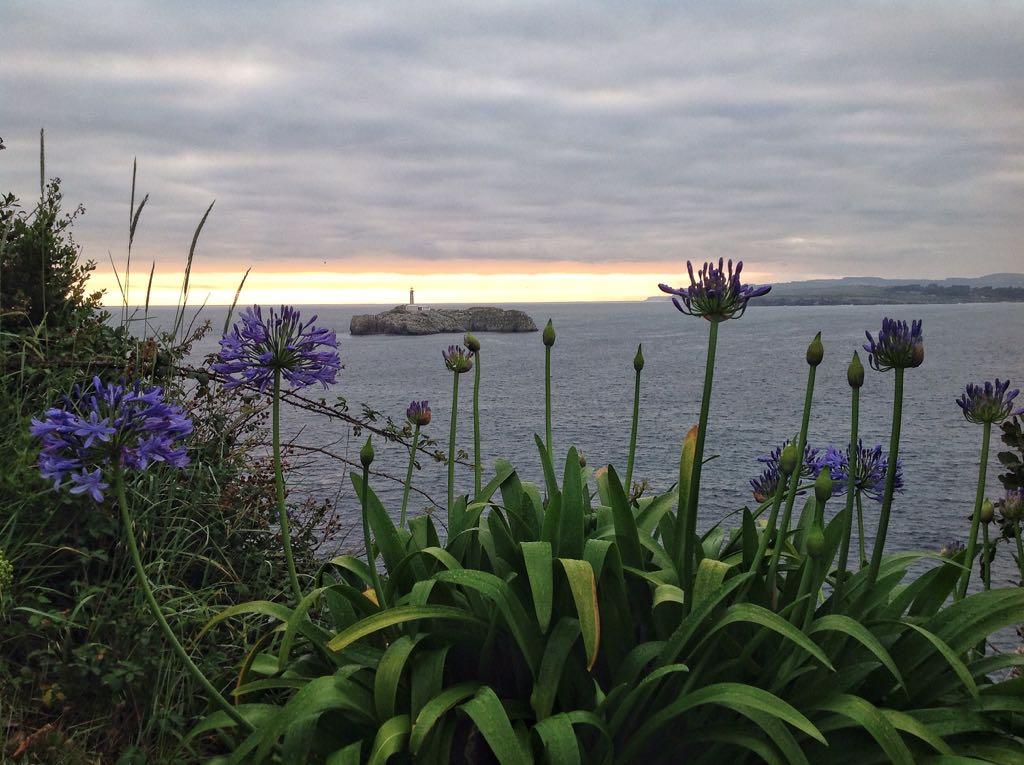 isla-mouro-horizonte-amarillo