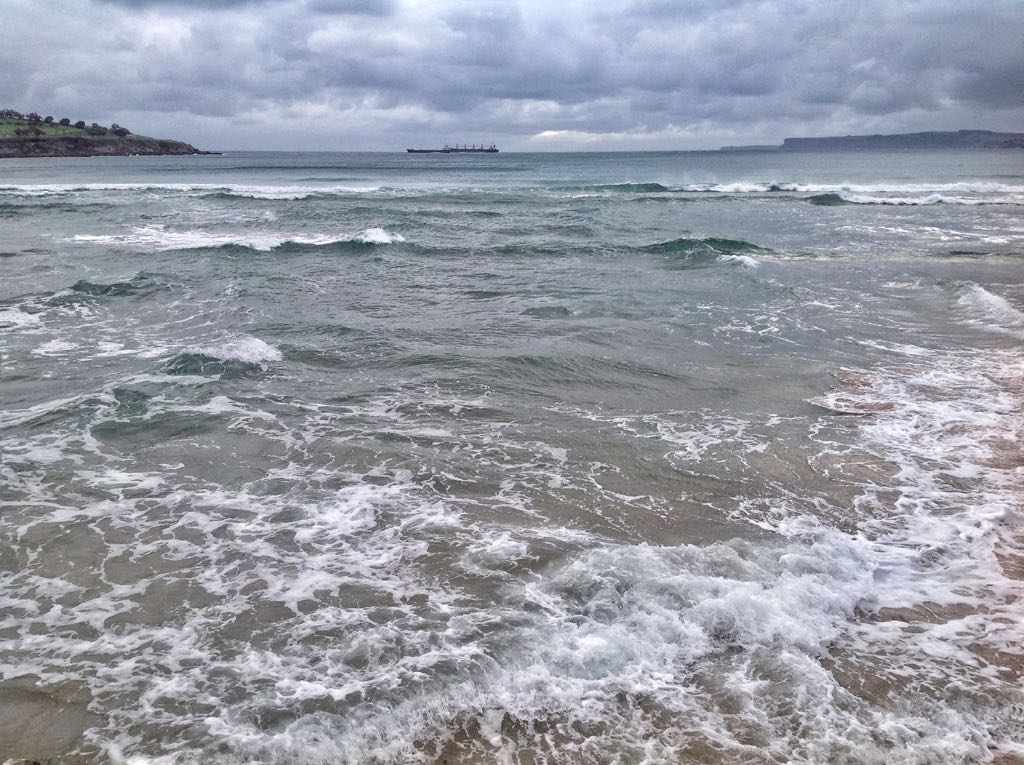 mar-juguetona-sardinero