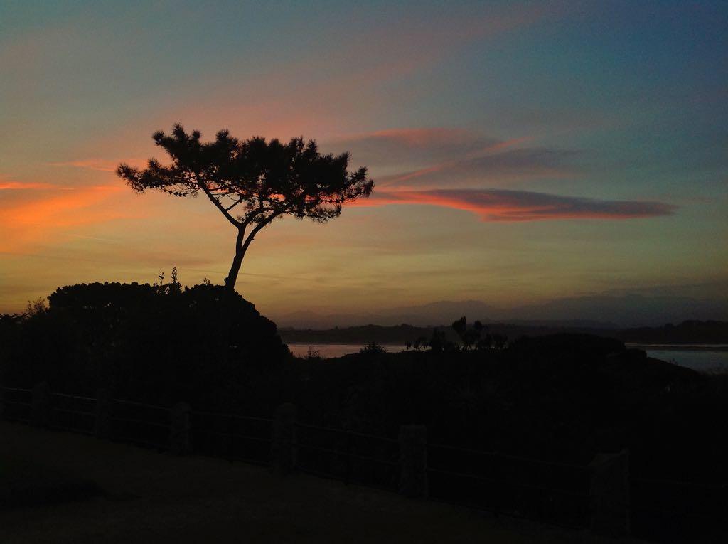 amanecer-pino-santander