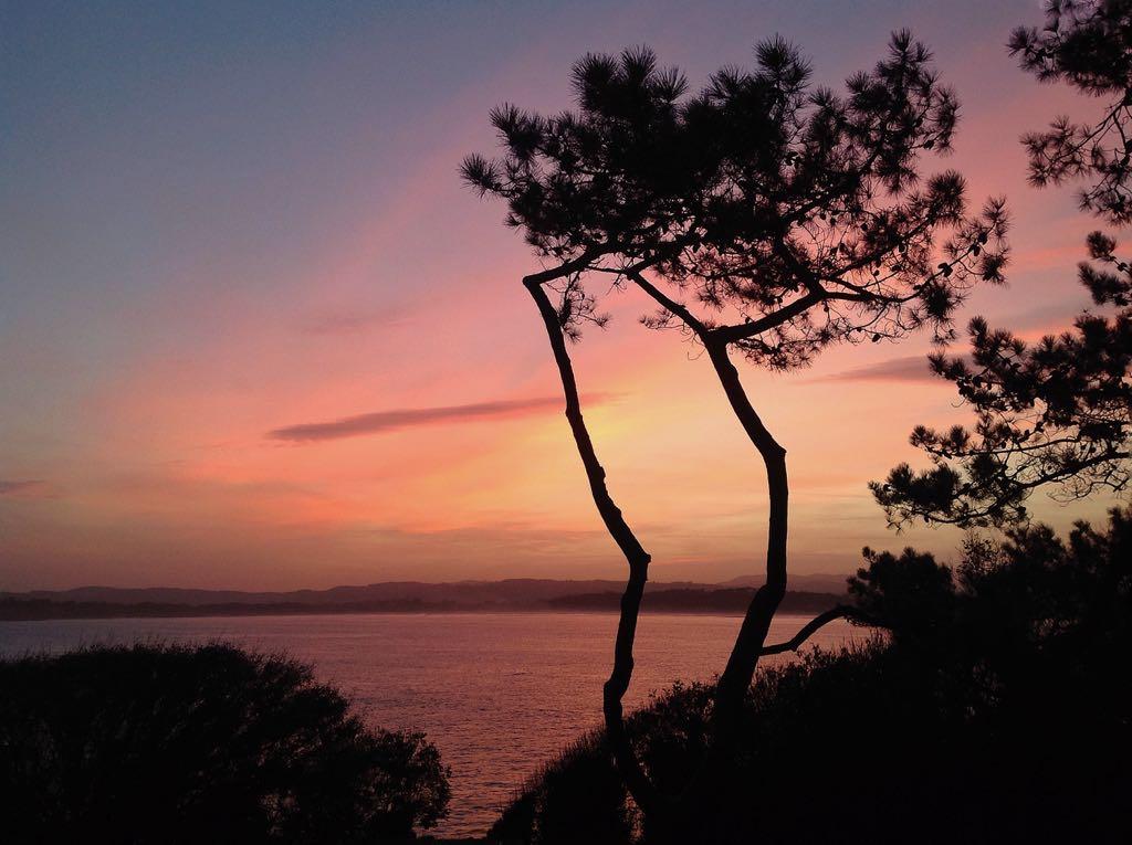 amanecer-pinos-santander