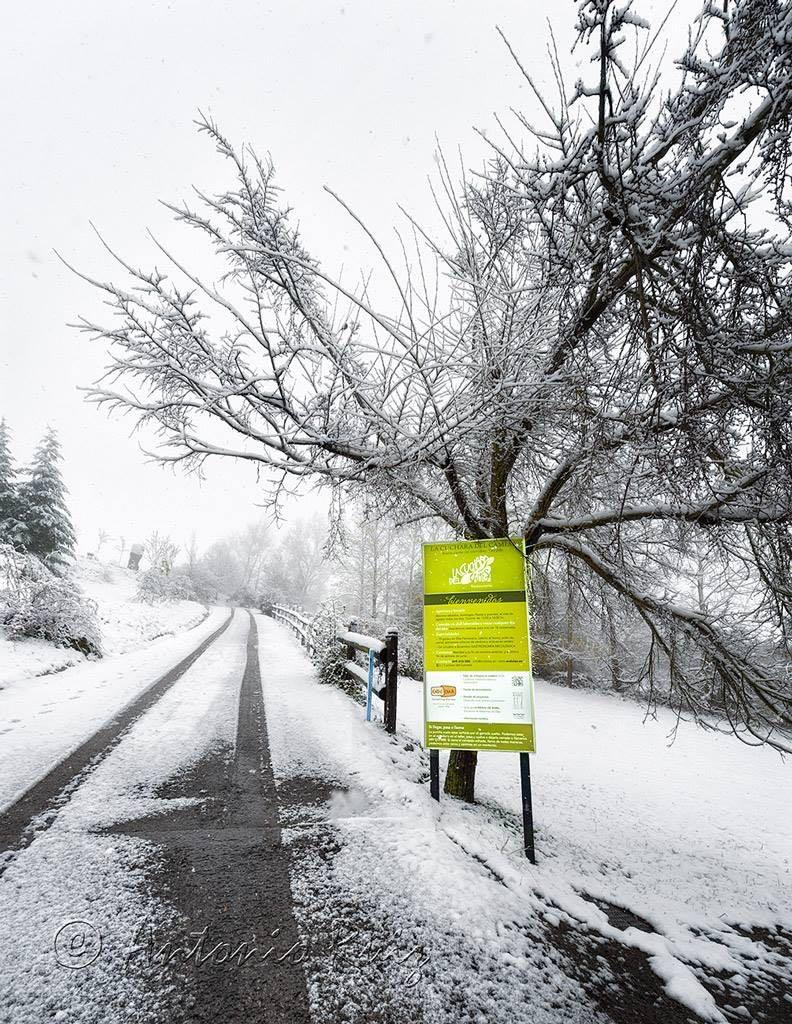 primera-nevada-noviembre-2015