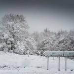 La calma poética de la nieve. Los primeros copos del otoño de 2015