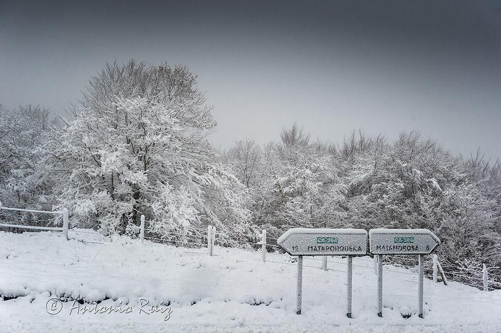 primera-nevada-otono-2015