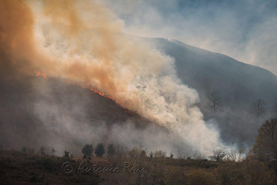 cantabria-incendios