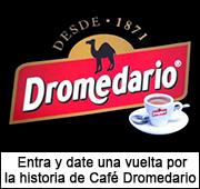 banner-dromedario-exposicion