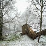 Nieva en el alto del Caracol, entre San Roque de Riomiera y Selaya