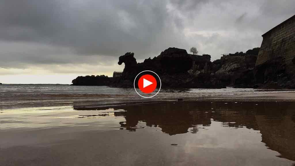 camello-video