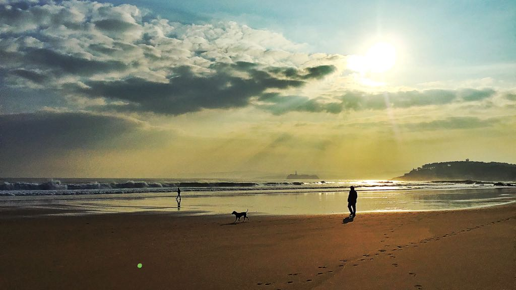 sol-sardinero-perro-santander