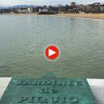 La vida en Santander: Un vistazo al abra del Sardinero