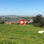 Cantabria, de la montaña a la mar: Bárcena de Cudón, Miengo, Cuchía