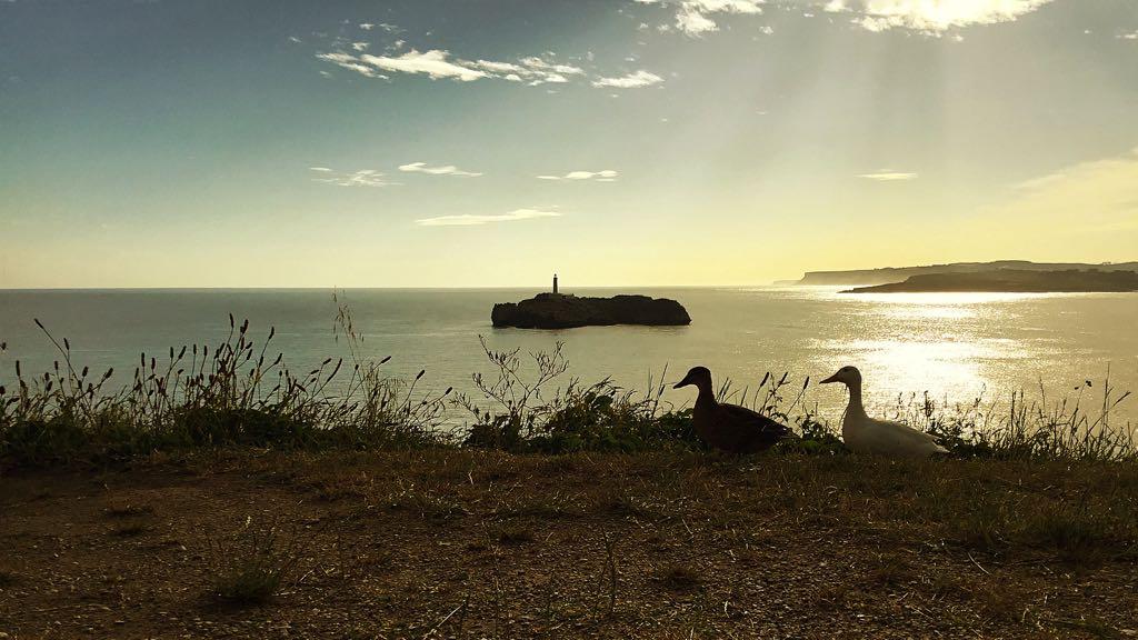 amanecer-mouro-santander-patos