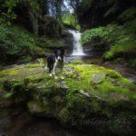 Rincones escondidos de Cantabria: El cañón de Aján