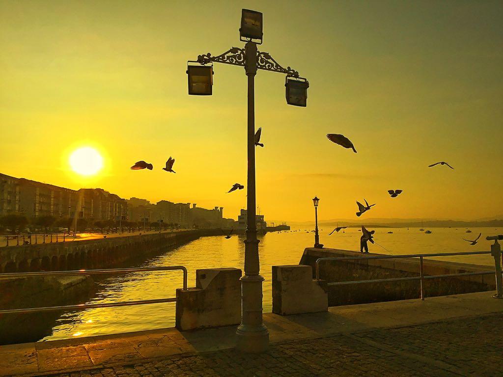 palomas-pescador-amanecer