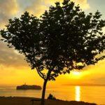 La isla de Mouro entre la hojarasca en un amanecer cualquiera