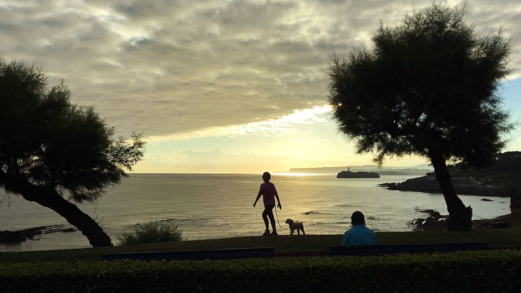 isla-mouro-perro