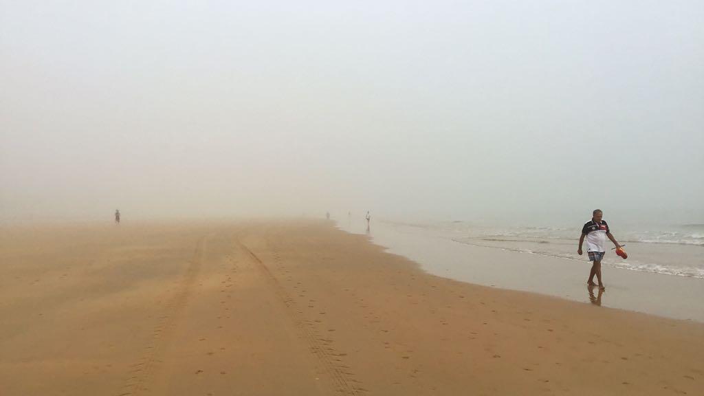 niebla-sardinero