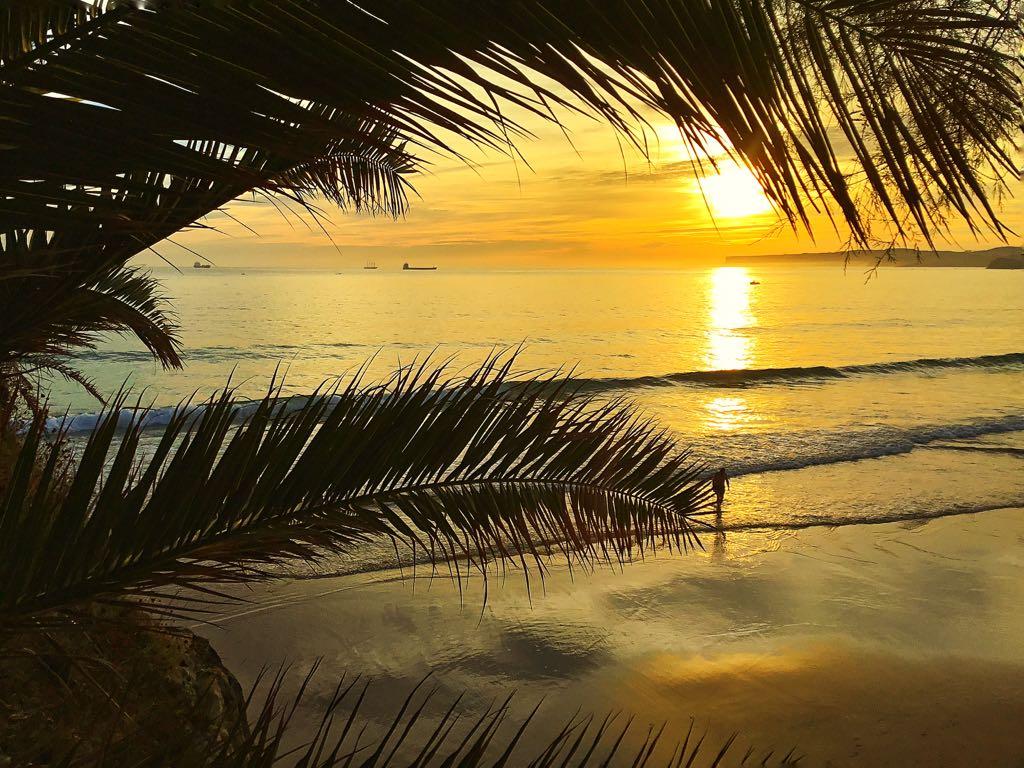 tropico-sardinero-amanecer