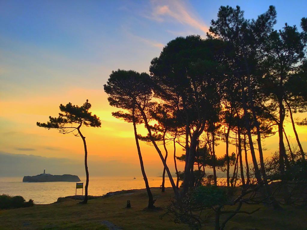 pinos-isla-mouro-amanecer