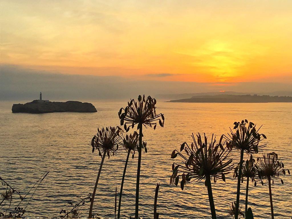 plantas-amanecer-isla-mouro