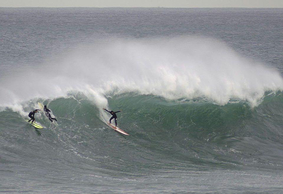 la-vaca-surf