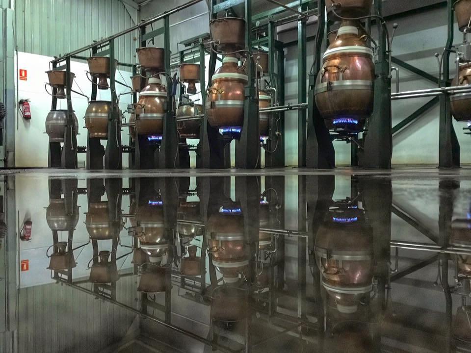 los-picos-destilado