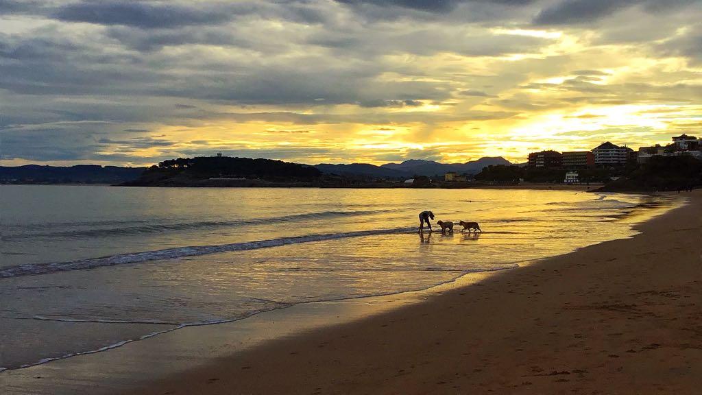 sardinero-amanecer-perros