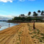 Sardinero o bahía. Tenemos playas para todos los gustos y actividades