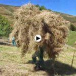 Alzando hierba a velorta en el Miera