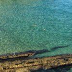 Un baño en las aguas cristalinas de Mataleñas para inaugurar un día de cine