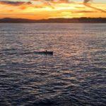La bahía de Santander en estado puro