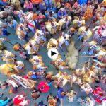 Os presentamos el spot de La Vijanera 2018. Con ganas del primer carnaval del año