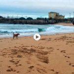 La vida en Santander: a primera hora en la playa del Camello