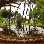 El estanque secreto