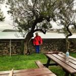 Lines, la guardiana del parque de Mataleñas