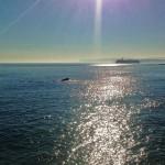 Un foco sobre las aguas del mar