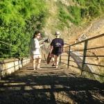 ¿Cuántos escalones hay que bajar para llegar a la playa de Mataleñas?