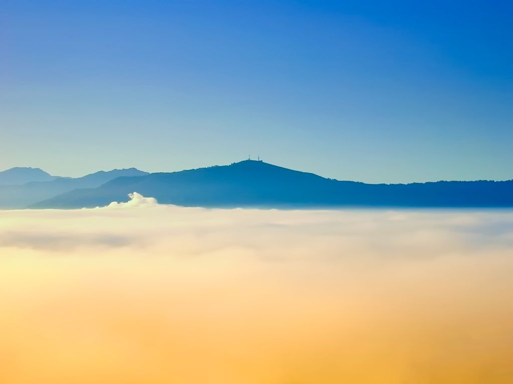 'Sobre un mar de nubes'.  Esta foto está hecha desde uno de los edificios del Alto Miranda. Esta bruma aparece cada muchos años cuando arranca el verano por efecto de la entrada de agua mas caliente del atlantico y un amanecer frío. Autor: Luis Marina