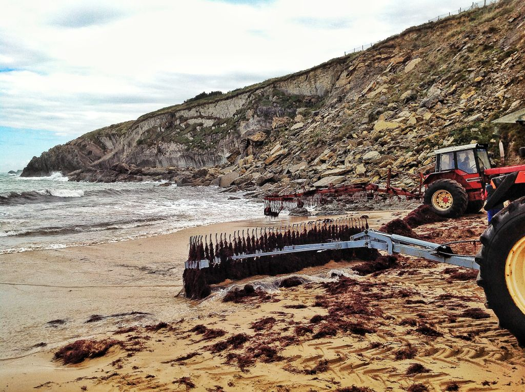 algas-la-arnia-tractores