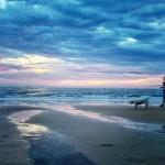 Difuminados al borde del mar