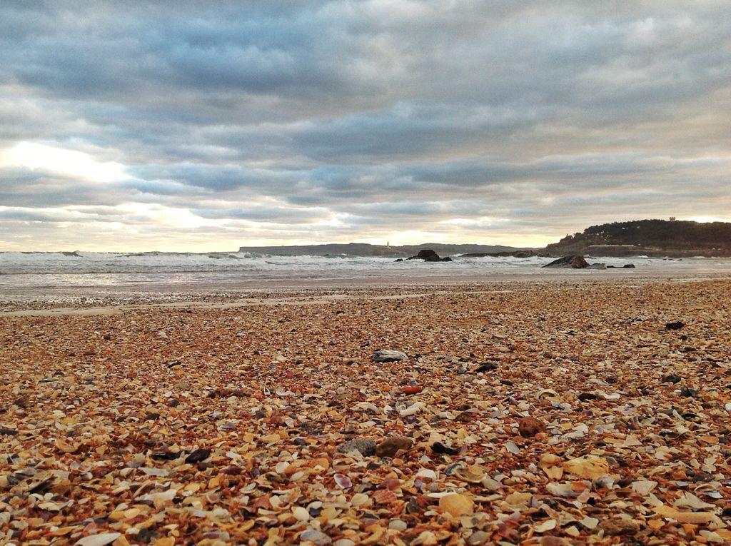 conchas-en-la-playa-de-la-concha-santander