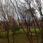El palacio de la Magdalena se insinúa entre las ramas
