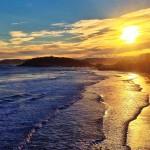 La orilla del Sardinero tiene alma de lagartija