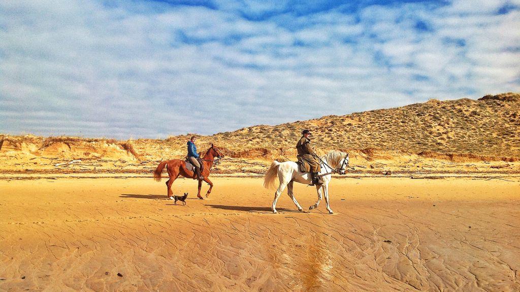 caballos-perro-rio-mogro