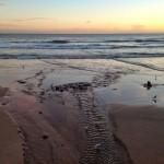 Una cola de sirena abandonada en el Sardinero