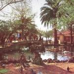 Nostalgia de pasear por los Jardines de Pereda