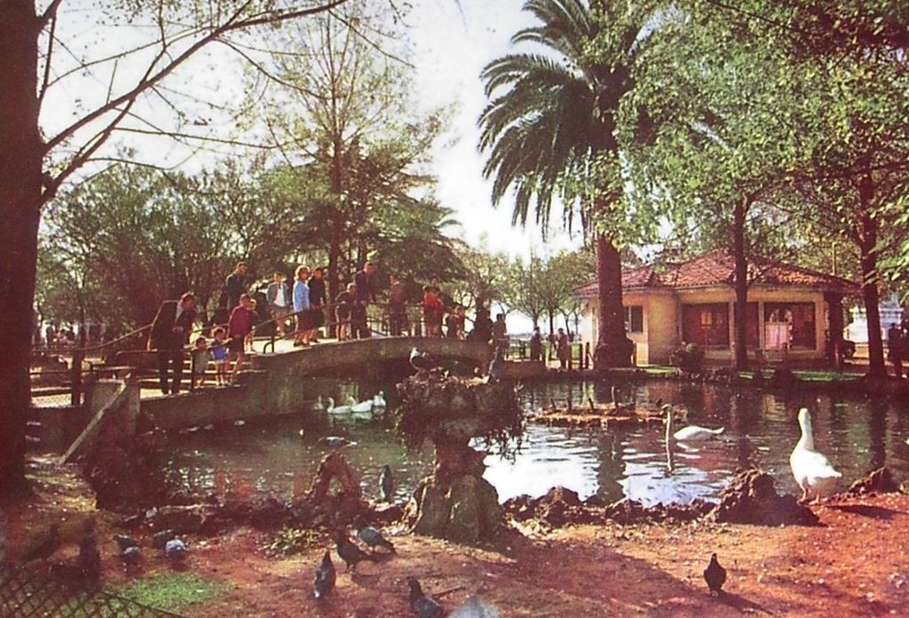 jardines-de-pereda-lago-patos