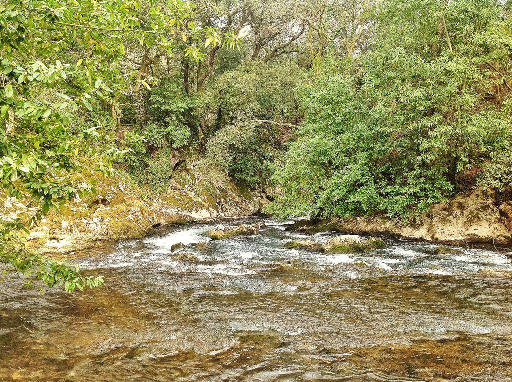 fuente-del-frances-cantabria-rio